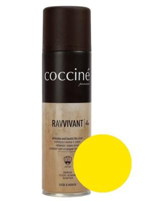 Żółta pasta, renowator do zamszu nubuku, Revvivant Coccine