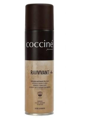Oliwkowa pasta, renowator do zamszu nubuku, Revvivant Coccine
